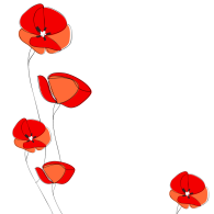 canva-poppies