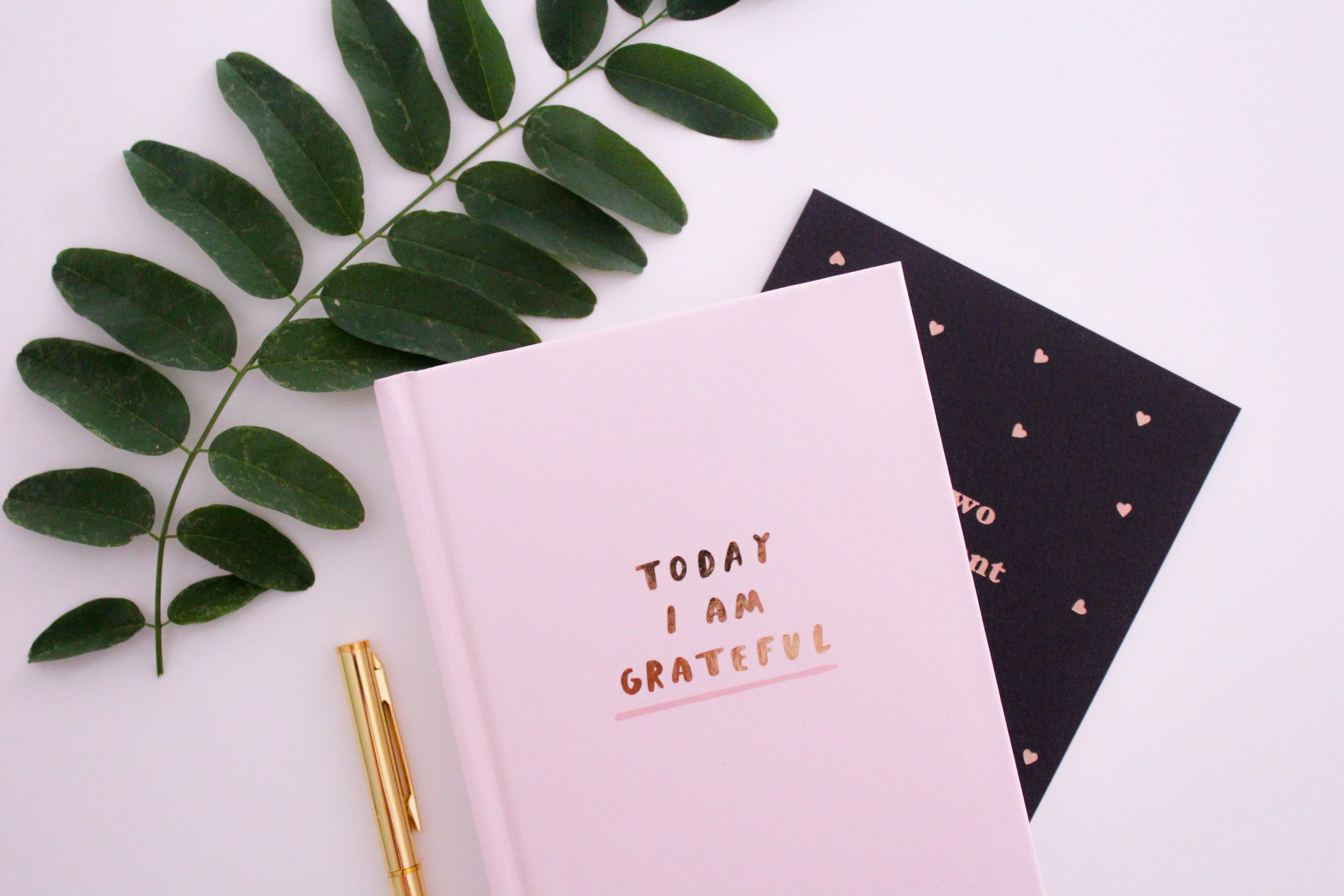 The Art and Grace of a Gratitude Journal