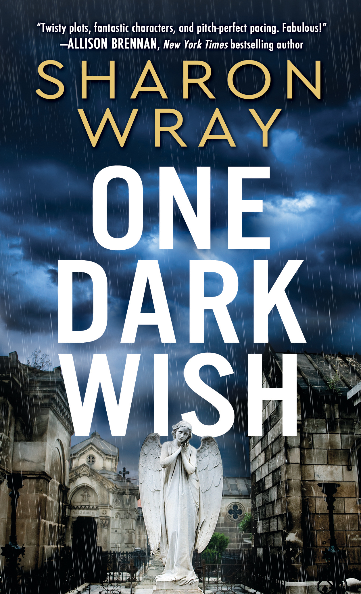 ONE DARK WISH is on Sale!
