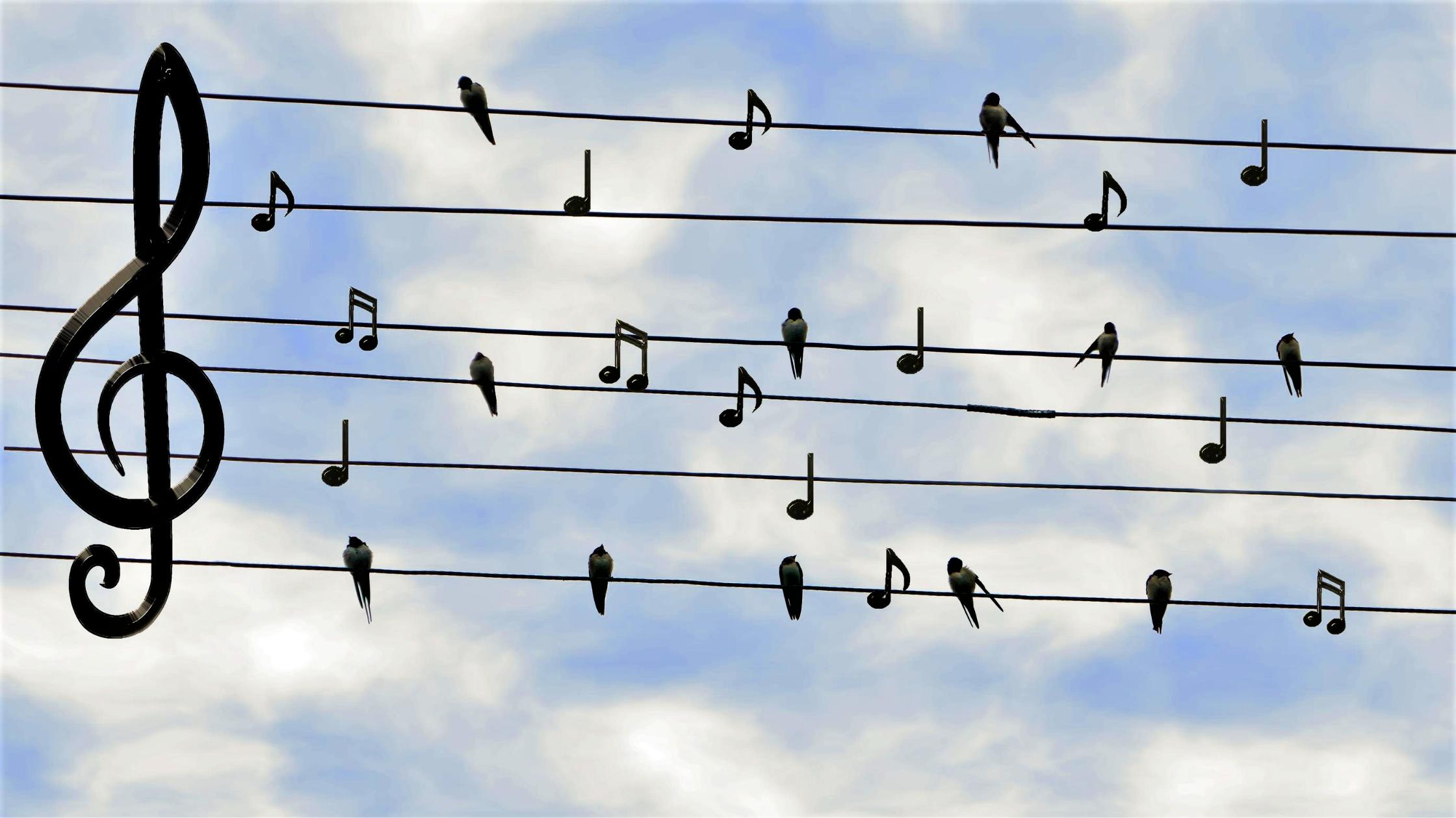 I Use Music